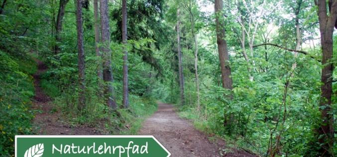 Stadtilmer Wander- und Naturlehrpfad