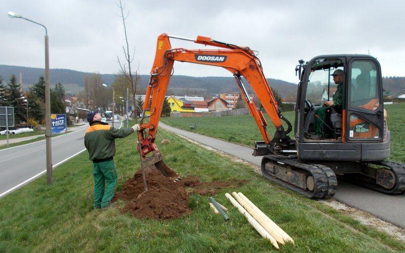 Ersatzbepflanzung entlang der Arnstädter Straße – Weg zum Friedhof